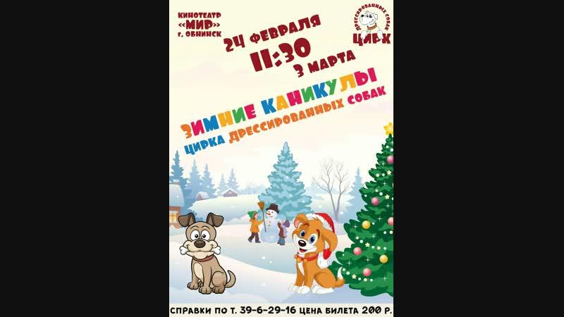 Бесплатные билеты на концерт от Цирка дрессированных собак который состоится 24 февраля (и 3 Марта) в 1130 в Кинотеатре М