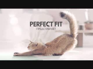 MARS_PERFECT FIT_Yoga_20 sec