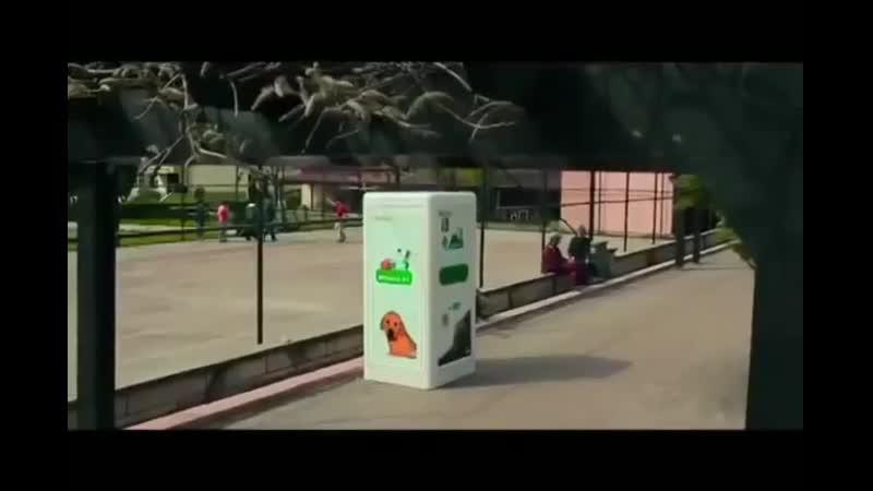 В Турции стоят автоматы, которые в обмен на пластиковую тару насыпают корм для бездомных собак
