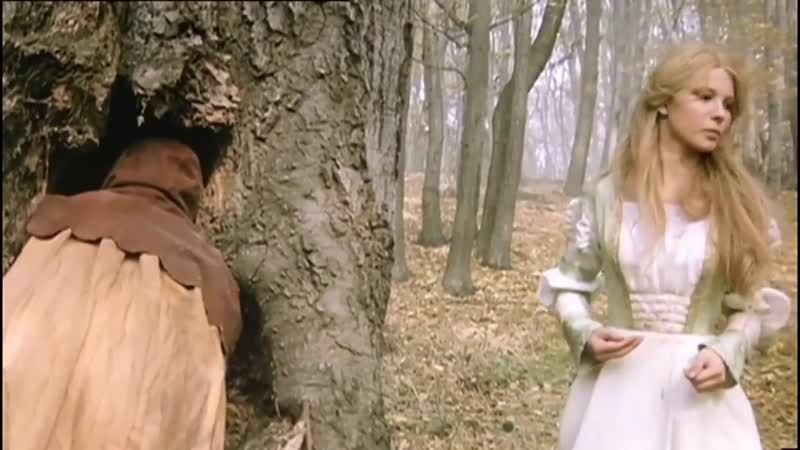 КОРОЛЬ ДРОЗДОВИК 1984 сказка Милослав Лютер