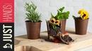 Chocolate flower pots | Akis Kitchen