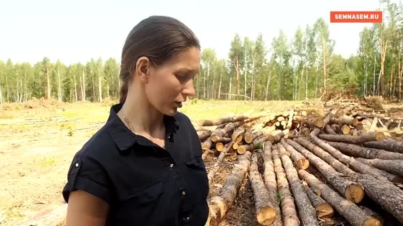В селе Мжакино Рязанской области вырубили лес который селяне н 720 X 1280 mp4