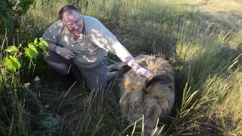 Массаж позвоночника для льва Марселя