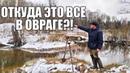 НАШЕЛ НА КРАЮ ОВРАГА НЕТРОНУТОЕ ПОСЕЛЕНИЕ! Поиск в лесу с металлоискателем / Russian Digger