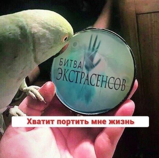 Уфимец подал в суд на «Битву экстрасенсов» за испорченную жизнь Передача вышла 8 лет назад, с тех пор жизнь Станислава Булатова круто изменилась в худшую сторону, и восстановить репутацию ему не
