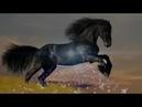 Dj Coverbot - Про коня .