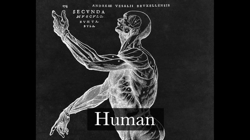 To Be Human — Marina The Diamonds Instrumental Cover (Harp Vərsion)