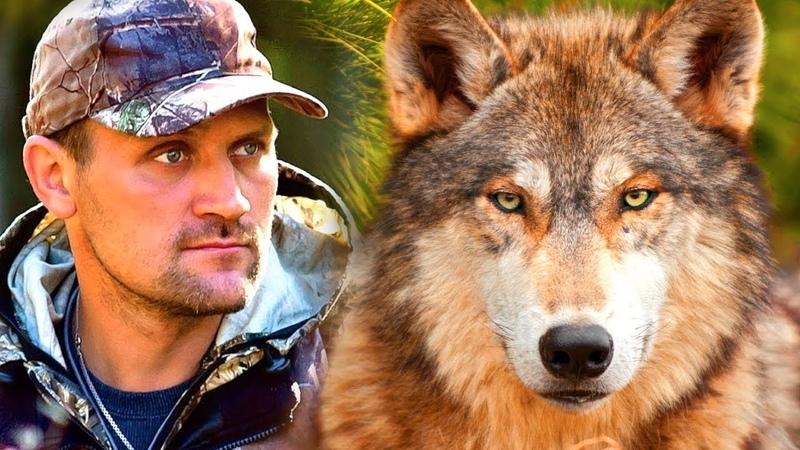 Охотник нашел маленького волчонка в лесу... А через несколько лет волк пришел к нему на помощь...