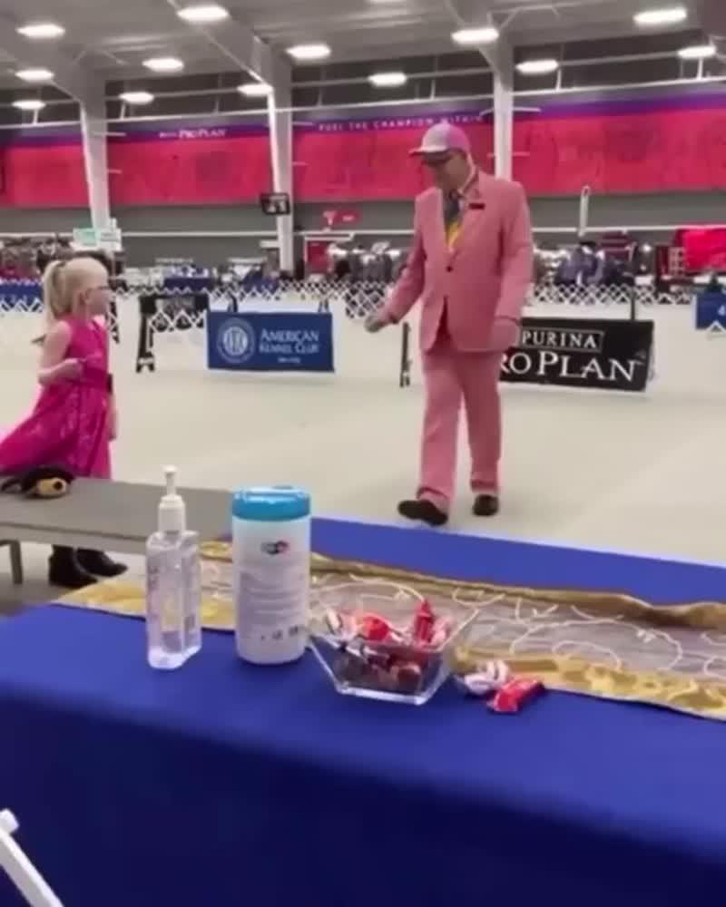 Игрушечный пес на выставке собак