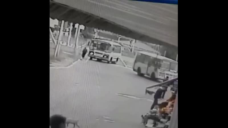 Маршрутчик не заметил как сбил женщину Регион 26 Ставрополь
