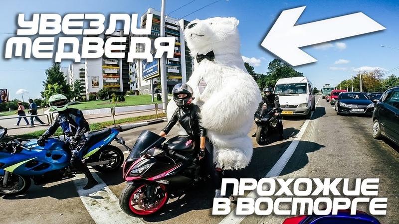 Прокатили медведя на мотоцикле - 3 метра высотой