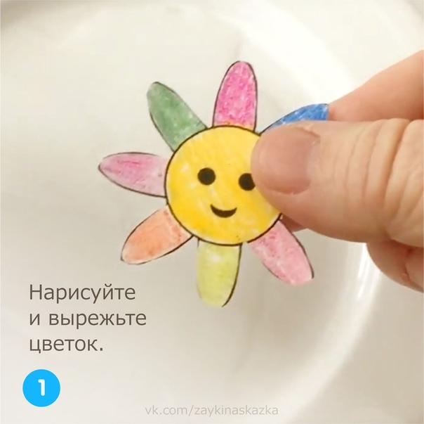 РАСПУСКАЮЩИЙСЯ ЦВЕТОК Занимательный фокус для детейДля проведения этого опыта нарисуйте цветок, как на картинке. Диаметр цветка вместе с лепестками около 6 см.Раскрасьте и вырежьте