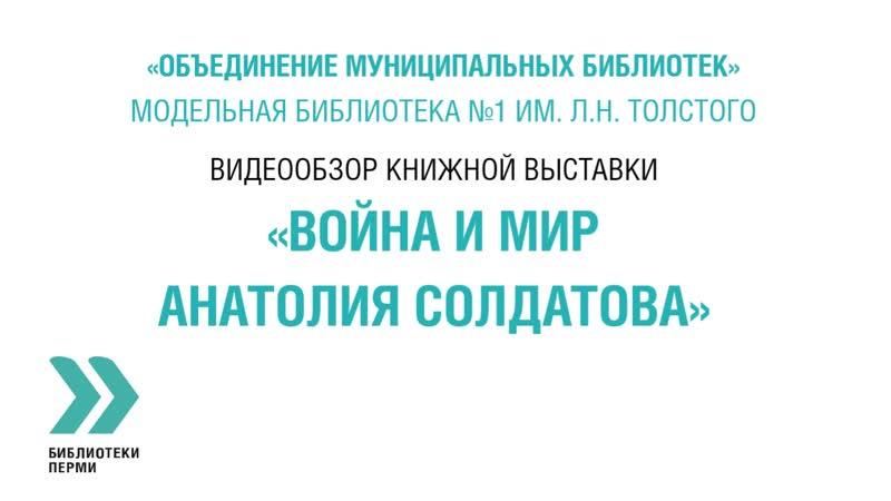 Видеообзор Война и мир Анатолия Солдатова