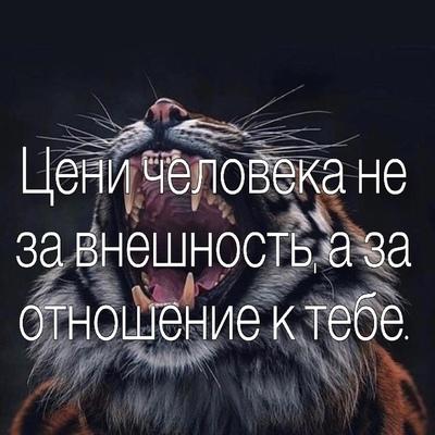 Игорь Ковтуненко