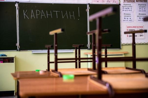 В Свердловской области на карантине 368 классов, и...