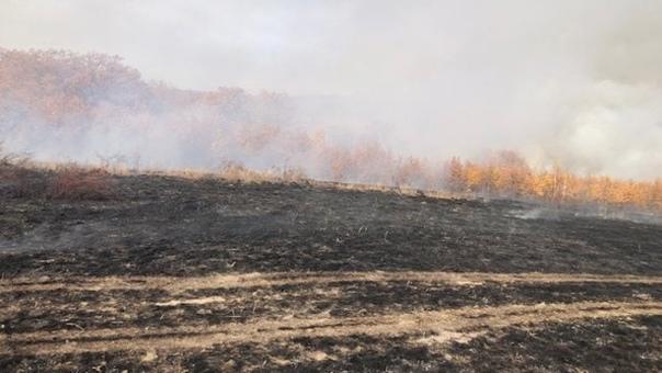 В Бузулукском районе потушили крупный пожарНа окраине сел...