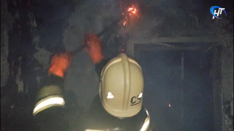 За минувшие выходные в Новгородской области на пожарах погибли двое человек