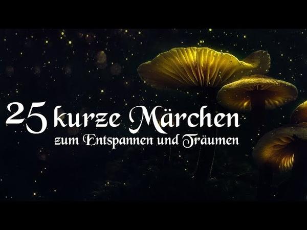 25 kurze Märchen zum Einschlafen und Träumen mit Grimm Andersen Reinheimer Hörbuch deutsch