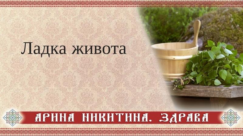 Ладка живота Арина Никитина