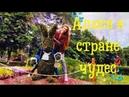Куда пойти в Киеве/ Выставка хищных растений/ Выставка Алиса в стране чудес