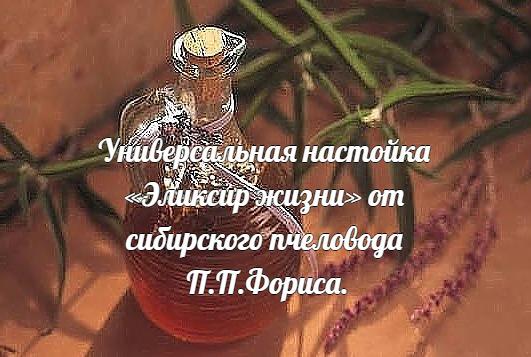Универсальная настойка «Эликсир жизни» от сибирского пчеловода П.П.Фориса.
