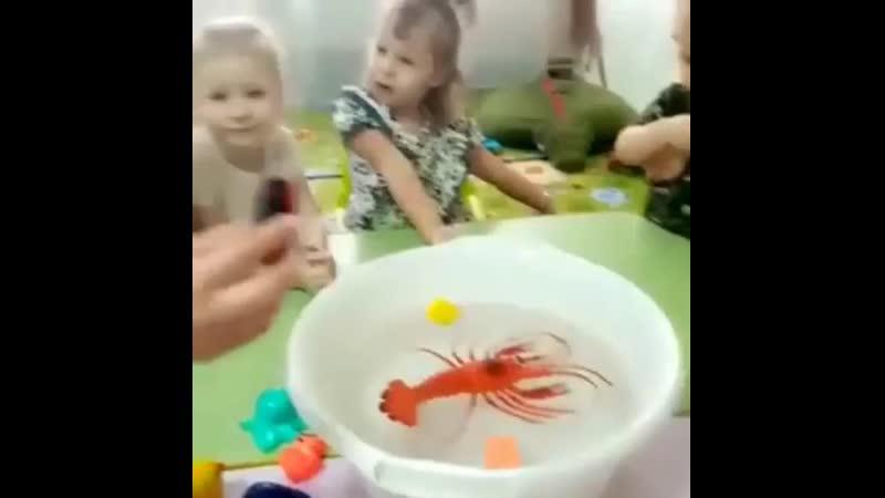 Плывет или тонет ⛵Сегодня с детками узнали про свойства предметов Из чего они сделаны и могут ли они плавать Что Изучаем в