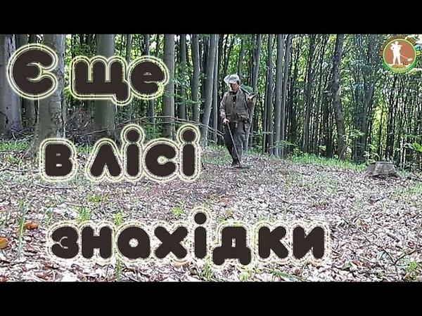 Коп в лісі. НЕ ОЧІКУВАВ ЙОГО ЗНАЙТИ. Передаю ПРИВІТИ. Пошуки з металошукачем ХР Деус в Україні