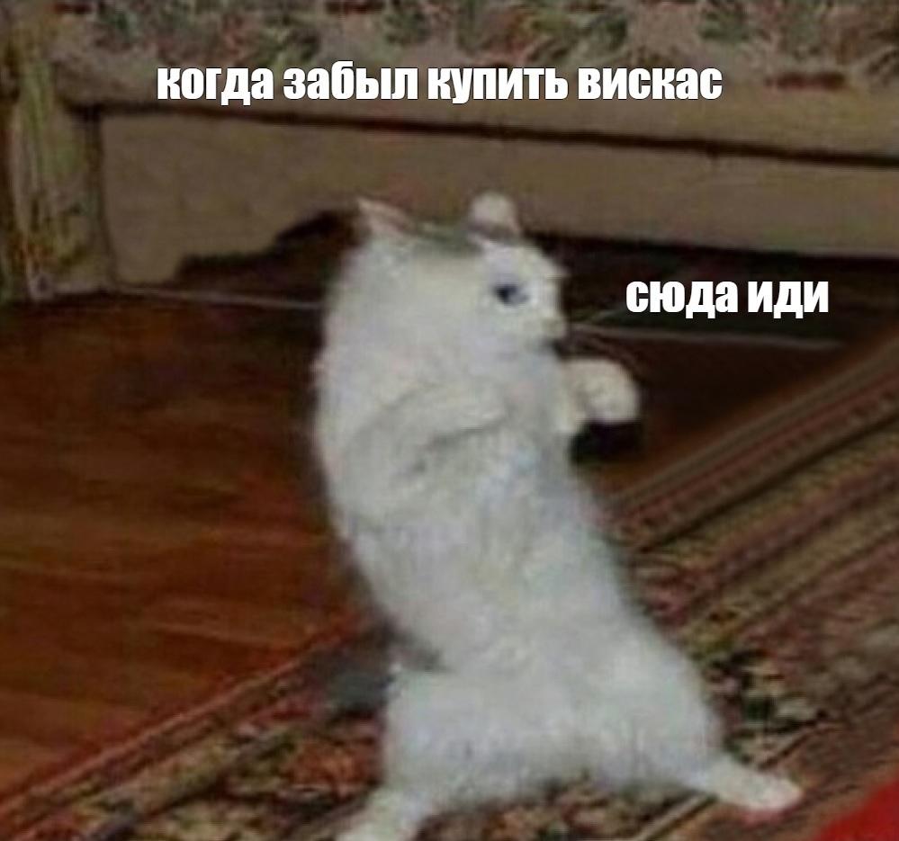 -tnanNkmOw0.jpg