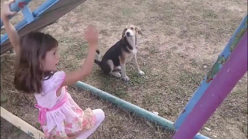 Reservoir Dogs VS Street Children Бешеные псы против беспризорных детей FUN