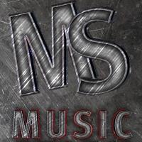 Логотип  MUSIC STORM