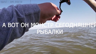 СУДАК НА СИЛИКОНМАЙСКИЙ ТРОФЕЙ ПОЙМАНРыбалка 2020 Казахстан Кокшетау оз Копа