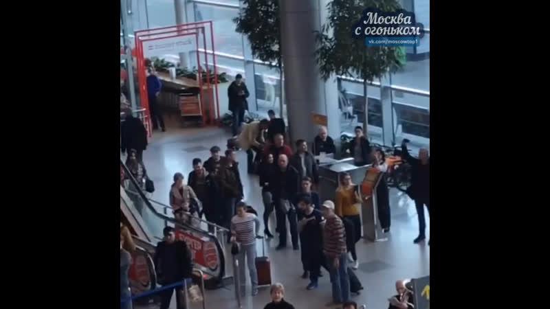 Флешмоб в московском аэропорту