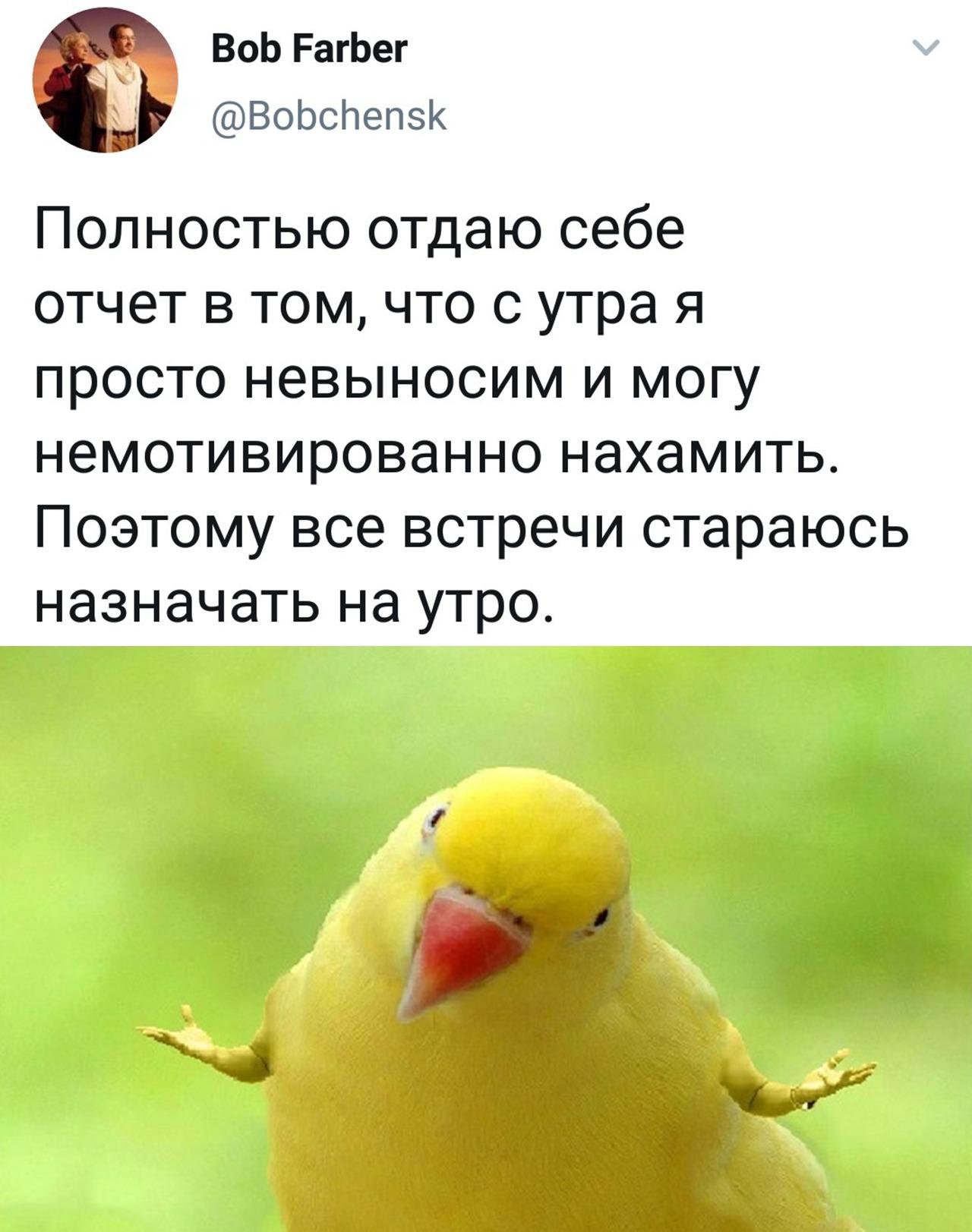 https://sun1-20.userapi.com/c543107/v543107855/568fd/wCwIOpOPGd4.jpg