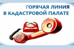 В Кадастровой палате – «горячая линия»