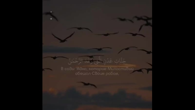 Чтец Abdul Rohman MosadSurat « 19 - Maryam »